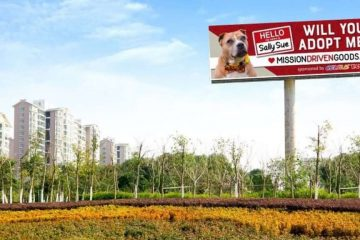 Dog Is Given His Own Billboard to finally Get Adopted & Leave the Shelter after Two Years